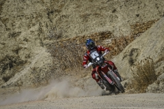 05 BRABEC Ricky (usa), Monster Energy Honda Team, Honda CRF 450 Rally, action during the Prologue of the Rallye du Maroc 2019 in Fes on October 4th - Photo Eric Vargiolu / DPPI