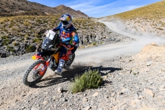 03 WALKNER Matthias (aut), Red Bull KTM Factory Racing, KTM 450 Rally Factory, action during the 1st stage of the Rallye du Maroc 2019 from Fes to Erfoud on October 5th - Photo Julien Delfosse / DPPI