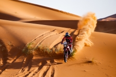 11 BARREDA BORT Joan (esp), Monster Energy Honda Team, Honda CRF 450 Rally, action during the 2nd Stage of the Rallye du Maroc 2019 from Erfoud to Erfoud on October 6th - Photo Julien Delfosse / DPPI
