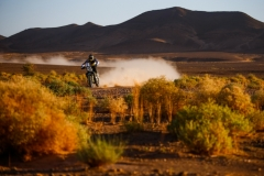 02 QUINTANILLA Pablo (chl), Red Bull KTM Factory Racing, KTM 450 Rally Factory, action during the 4th Stage of the Rallye du Maroc 2019 from Erfoud to Erfoud on October 8th - Photo Julien Delfosse / DPPI